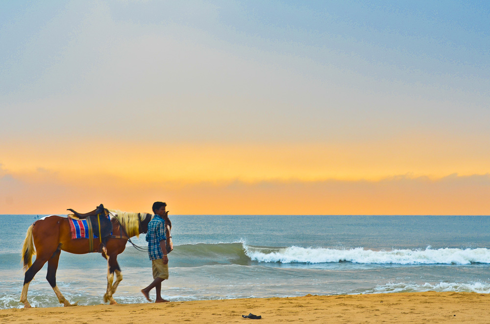 Horse riding is a very famous tourist attraction in some of the major cities and Marina Beach is no exception, You get to ride on this horse with its master close by for 25 Rupees for five minutes.Its a  must for everybody to give a try and its a completely different feeling.